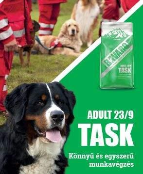 bavaro_task_kutyatap